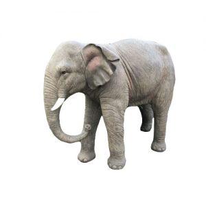 Ellie the elephant